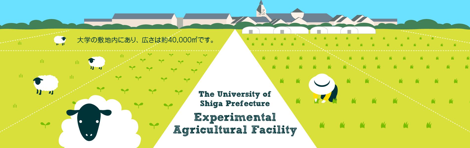 大学の敷地内にあり、広さは約40,000平方メートルです。
